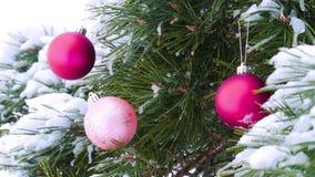 Close-up van snow-covered takken van sparren, met ballen van Kerstmis de heldere Bourgondië in het bos de camera worden verfraaid stock footage