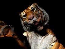 Close-up van tijger het aanvallen stock illustratie