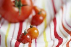 Close-up van tomaten op tafelkleed Stock Afbeelding