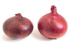 Close-up van twee gehele rode uien Royalty-vrije Stock Afbeelding