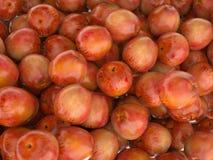 Close-up van vele Rode rijpe appelen Stock Afbeeldingen