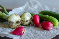 Close-up van vers geoogste groenten royalty-vrije stock fotografie
