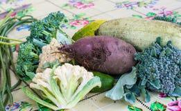 Close-up van vers geoogste groentenrapen, bieten, wortelen, rond merg, tomaten, komkommer, courgette, nierbonen, stock afbeelding