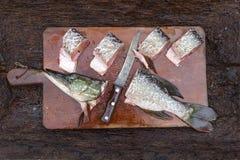 Close-up van Verse die vissensnoeken in gedeeltenplakken met knif worden gesneden Stock Afbeeldingen