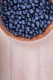 Close-up van verse en heldere bosbessen Gezonde, rijpe, ruwe en heldere donkerblauwe bessen op een houten achtergrond De ruimte v Stock Fotografie