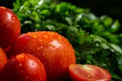 Close-up van verse, rijpe tomaten, aubergine en peterselie Groep van stock afbeelding