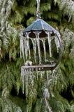 Close-up van vogelvoeder met ijskegels stock afbeeldingen