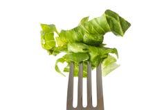 Close-up van vork met salade Stock Fotografie