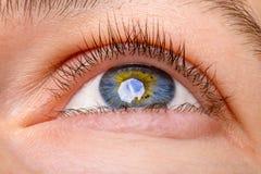 Close-up van vrouwenoog die wordt geschoten - omhoog eruit zien die Menselijk blauw oog met bezinning stock afbeelding