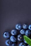 Close-up van zoete bosbessen met een groen blad van munt op een donkerblauwe achtergrond Gezond en smakelijk bessenhoogtepunt van Stock Foto's