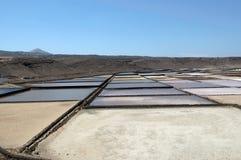 Close-up van zoutmeren stock foto