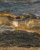 Close-up van zwarte en gouden rots op het strand stock afbeelding