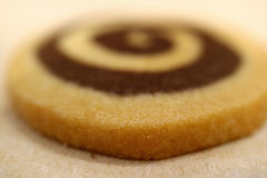 Close-up of vanilla and chocolate swirl cookie with selective focus for texture and background Royalty Free Stock Images