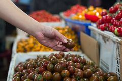 A woman shopping for vegetables andfruit at the market on the street royalty free stock photos