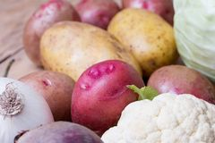Close up of various colorful raw vegetables. Potato, cauliflower, cabbage, beetroot and garlic Stock Images