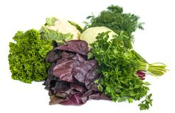 Close up of various colorful raw vegetables on white background Stock Image