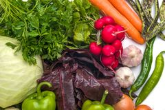 Close up of various colorful raw vegetables on white background Royalty Free Stock Photography