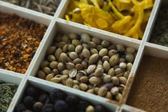Various spices arranged in tray Stock Photo