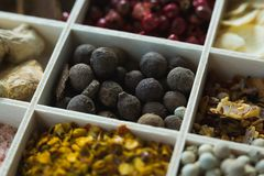 Various spices arranged in tray Royalty Free Stock Image