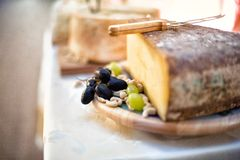 Close-up of Various types of cheese as appetiser at party Stock Photography