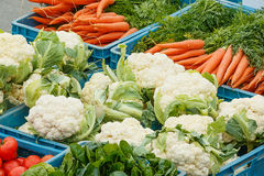 Close-up of various vegetable items on farmer market. Photo shows close-up of various vegetable items on farmer market in plastic boxes during a day Stock Images