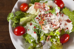 Close up vegetable salad with small tomato. Close up vegetable salad with small tomato, bacon and cheese Stock Photos