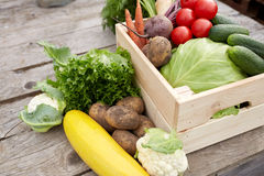 Close up of vegetables on farm Stock Photos