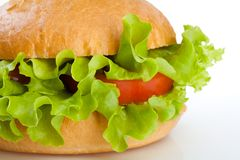 Close-up of vegetarian healthy hamburger Royalty Free Stock Photo