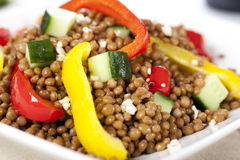 Close Up Vegetarian Lentil Salad Royalty Free Stock Photography