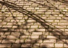 Close-up velho do pavimento da pedra para o fundo ou a textura imagem de stock