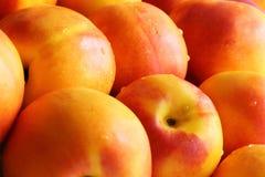 close-up Vermelho-amarelo das nectarina Imagens de Stock