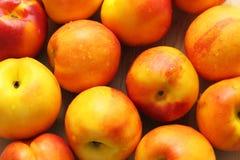 close-up Vermelho-amarelo das nectarina Imagem de Stock