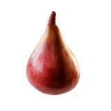 Close up vermelho da pera isolado no fundo branco Foto de Stock Royalty Free