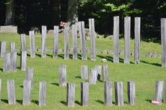 Close up of vertical wooden pieces at the Sarmizegetusa Regia Sanctuaries Royalty Free Stock Photo