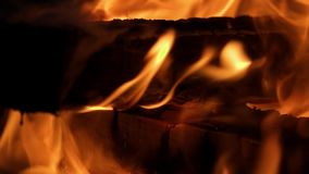 Burning firewood close up stock video footage