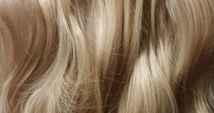 Close up video or woman`s blond hair. Close up video of woman`s long wavy blond hair stock footage