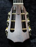 Acoustic Guitar Headstock. A close-up view of an acoustic guitar`s open-slotted headstock. The wood of the headstock is dark and the tuning hardware is gold Royalty Free Stock Photography