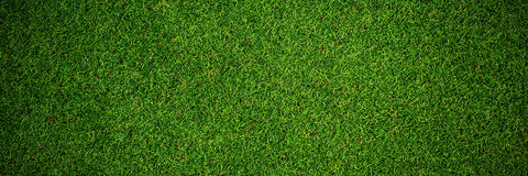 Close up view of astro turf Royalty Free Stock Image