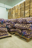 Close up view on bags of potato in storage house Royalty Free Stock Image
