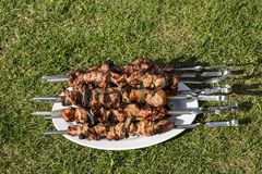 Close up view of barbecue on grill on big white plate. Food background. Outdoor backgrounds stock photos