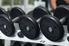 Close-up view of barbells organized in row Royalty Free Stock Photography