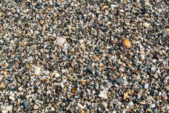 Close up view of beach with small stones, sand and shells Royalty Free Stock Photo