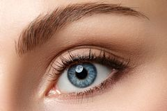 Close up view of beautiful blue female eye stock photo