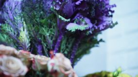 Close up view of beautiful bouquet of roses and flowers with Violet leaves stock footage