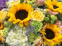 Close up view of beautiful flower bouquet Stock Images