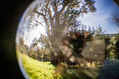 Close up view on beautiful landscape trees in blue sky and green meadow through lens ball sphere, france. Close up view on beautiful landscape trees in blue sky Royalty Free Stock Photos