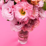 Close-up view of beautiful tender pink eustoma flowers bouquet in vase. Isolated on pink Royalty Free Stock Photography