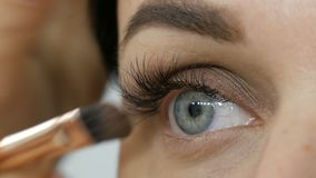 Close-up view of beautiful woman blue eye with extended eyelashes. Makeup artist applies makeup using special eyebrow. And brush eye shadow to beautiful model stock footage