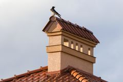 Close-up view of bird sitting on top of high plastered chimney of new big spacious modern house with shingled red roof against bri. Ght blue sky background stock photography