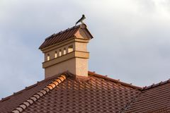 Close-up view of bird sitting on top of high plastered chimney o. F new big spacious modern house with shingled red roof against bright blue sky background stock photo